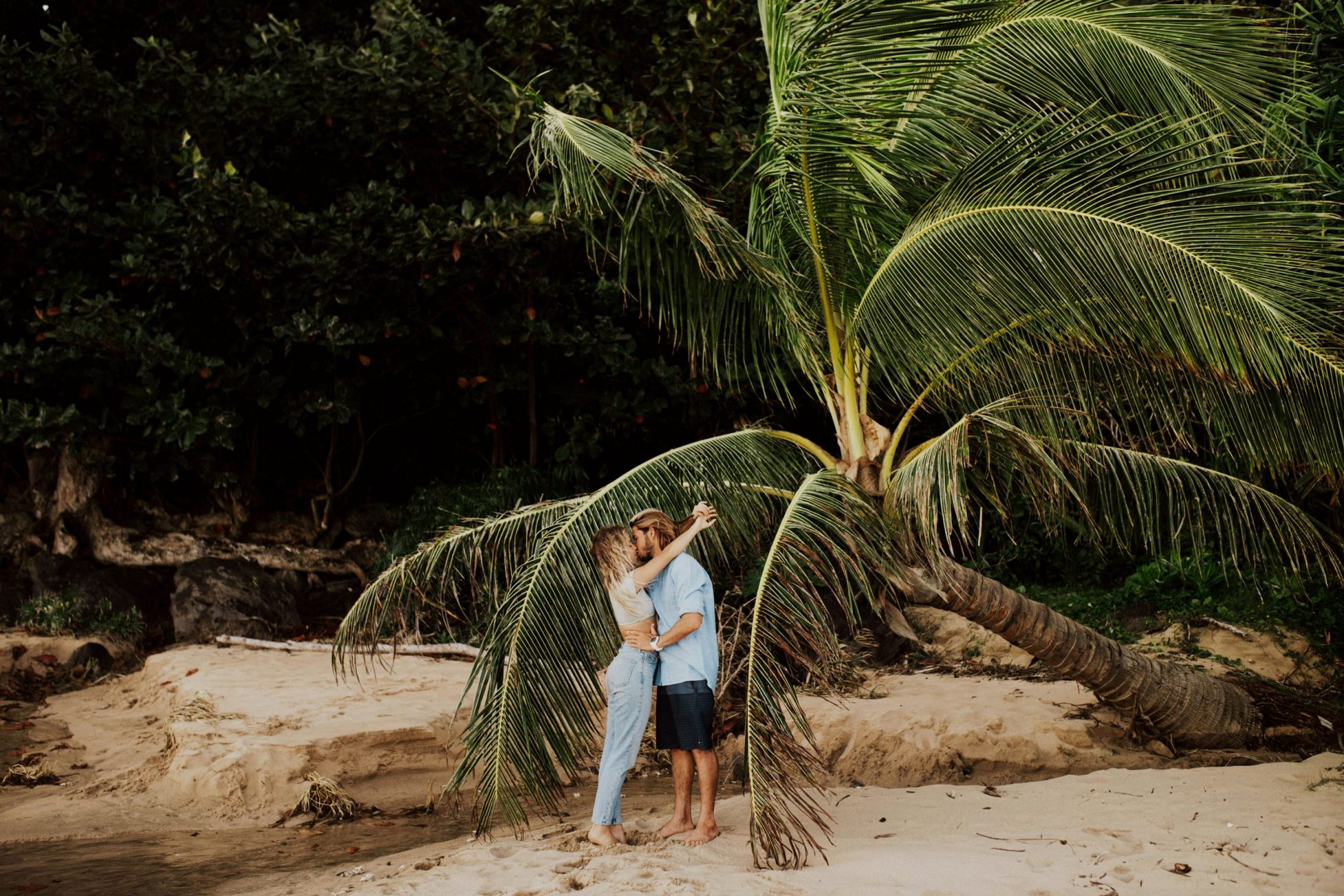 couple kiss while under a palm tree